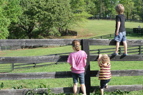 April 2012, farm trip 014