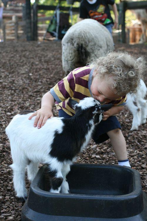 April 2012, farm trip 036