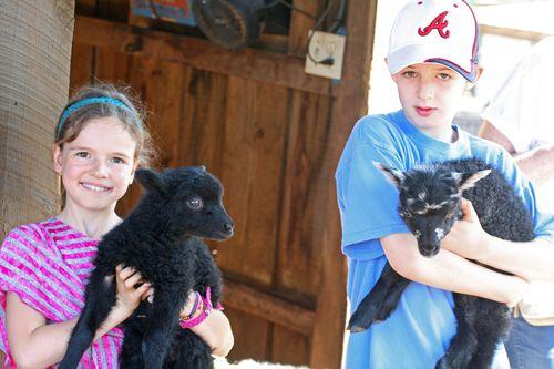 April 2012, farm trip 069_edited-1